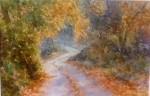 Soft Autumn Lane